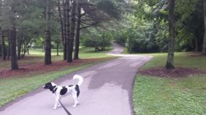 Deerwood Arboretum