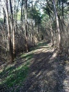 Trails at Fontanel